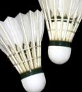 Badminton-news-anchor