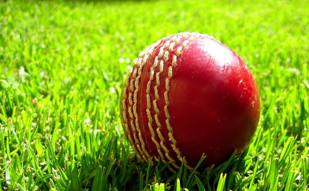 Cricket-news-anchor