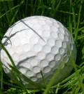 Golf_news_anchor