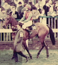meriel-tufnell_scorched-earth_kempton-park-racecourse_finishing-second-in-the-first-ladies-race-in-may-1972