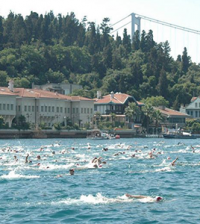 Swim-Trek-1