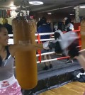 boxing-masterclass-1