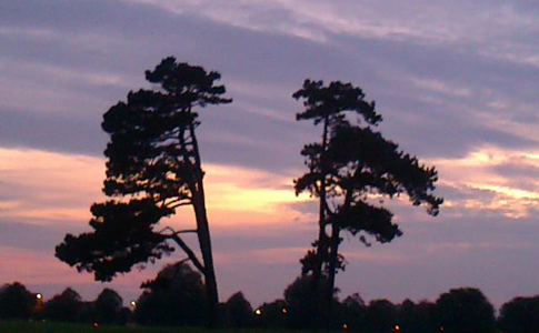 Sunrise whilst out on one of my many runs