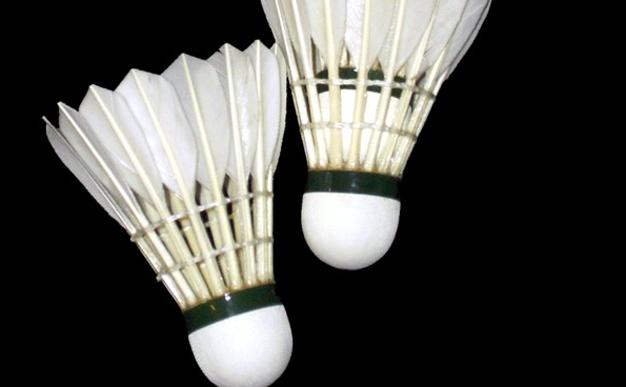 Badminton: Heather Olver is seeing double